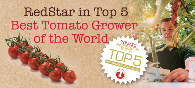 RedStar in top 5 beste tomatentelers ter wereld: 'B-to-B champion'